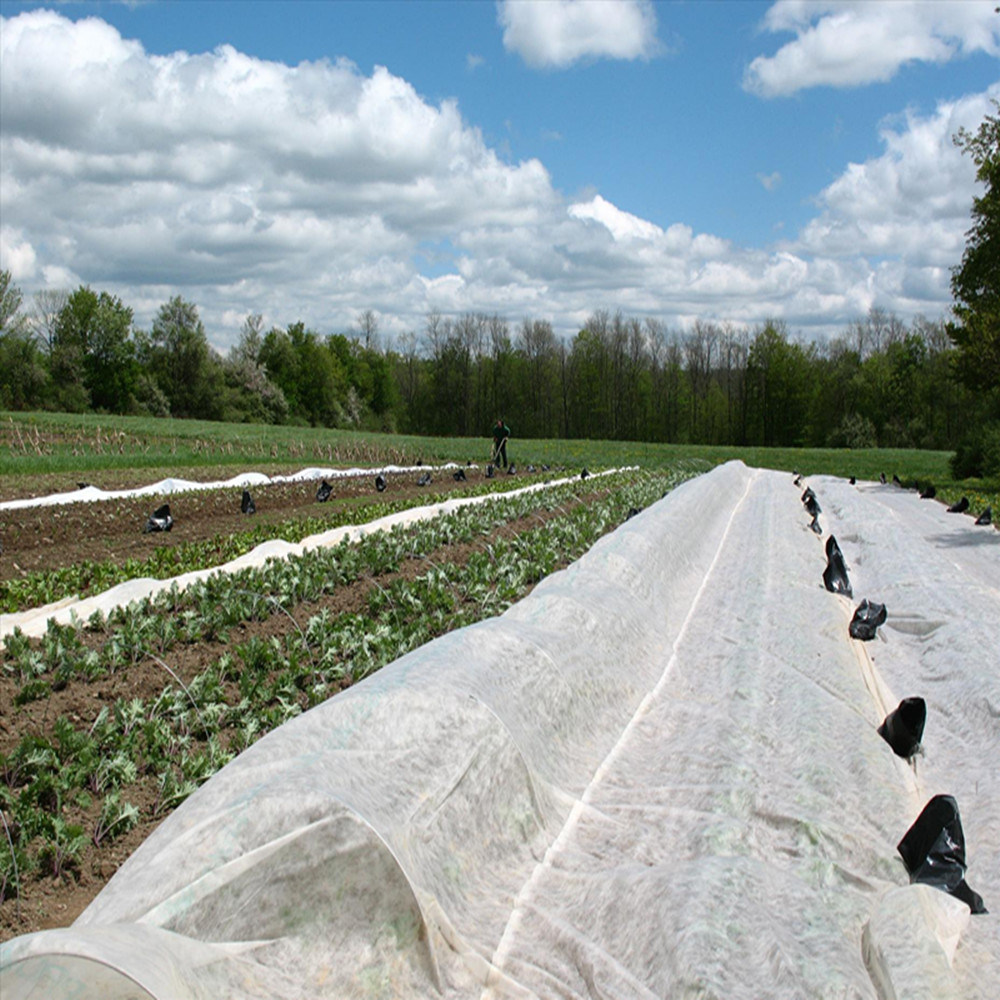 Crop Covers Polypropylene Spun Bonded Non-Woven Fabric UV Stabilised
