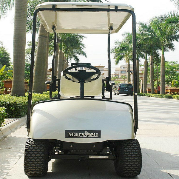 1 Seater Cheap Electric Golf Cart Dg-C1 with CE Certificate From China