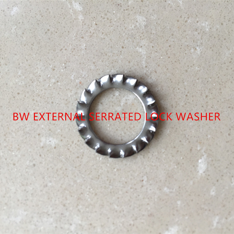 DIN6798A External Serrated Lock Washer