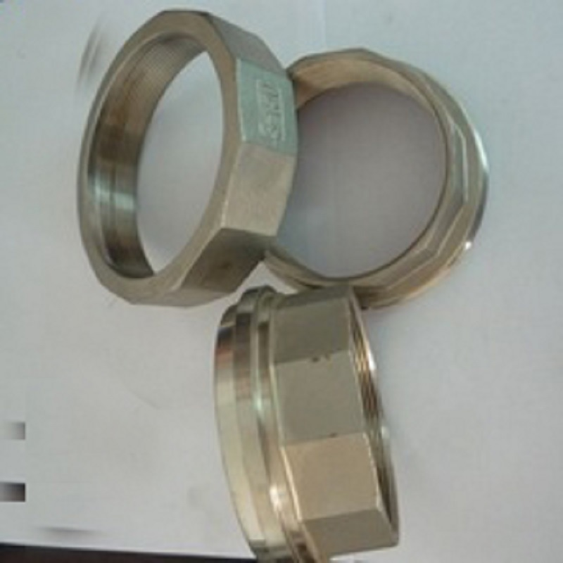 Precision Casting Pipe Nipple Quick Coupler (Precision Casting)