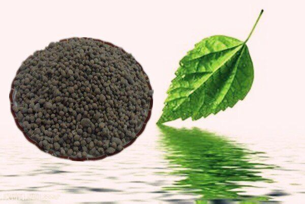 100% Water Soluble Agriculture Organic Humic Acid