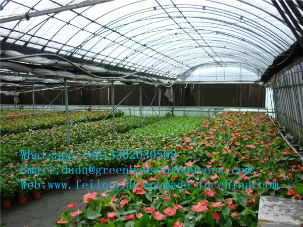 $ 6.6 USD/M2 Multi-Span Gothic Film Greenhouse FM-8m (HDG)