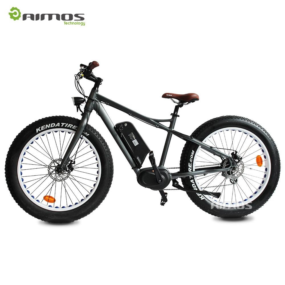 26′′ 48V 1000W Hidden Battery MID Drive Motor Electric Bike