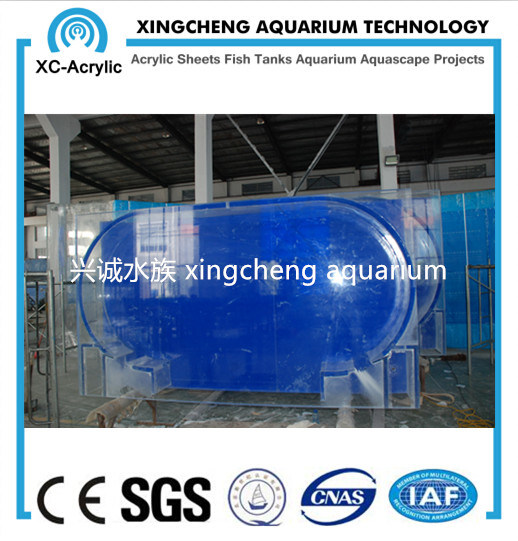 Customized Clear Acrylic Aquarium Fish Tank Project