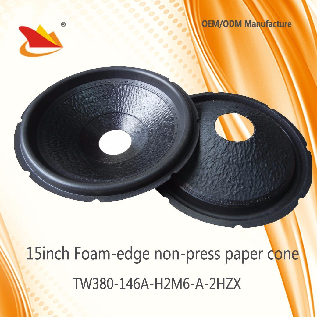 Best Price 15inch Subwoofer Parts Non-Press Paper Cone-Speaker Cone
