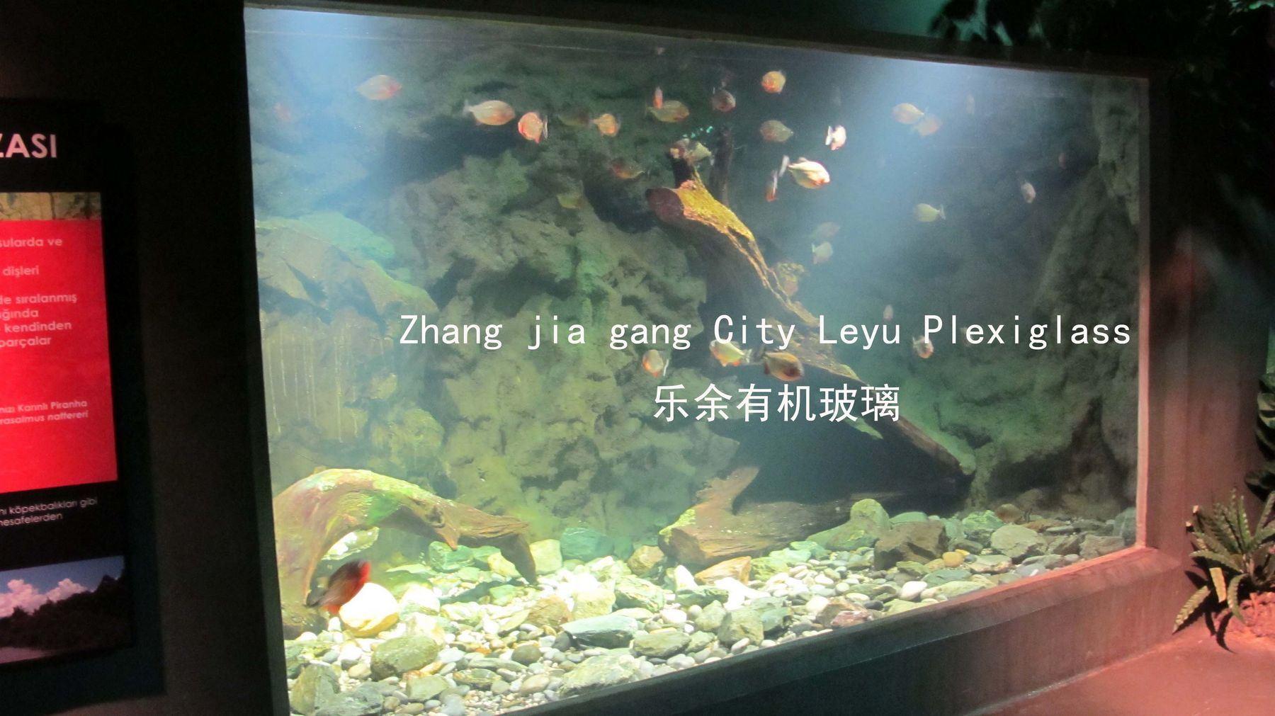 China Custom Giant Acrylic Fish Tank 9 China Acrylic