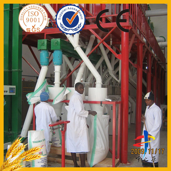 50tpd Maize Flour Milling Machine with 3 Years Warranty