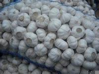 2016 New Crop Normal White Garlic