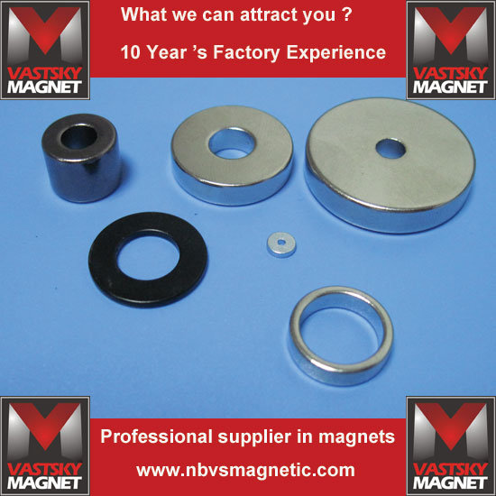 N52 NdFeB Permanent Magnet with Ring Arc Block Disc Cylinder