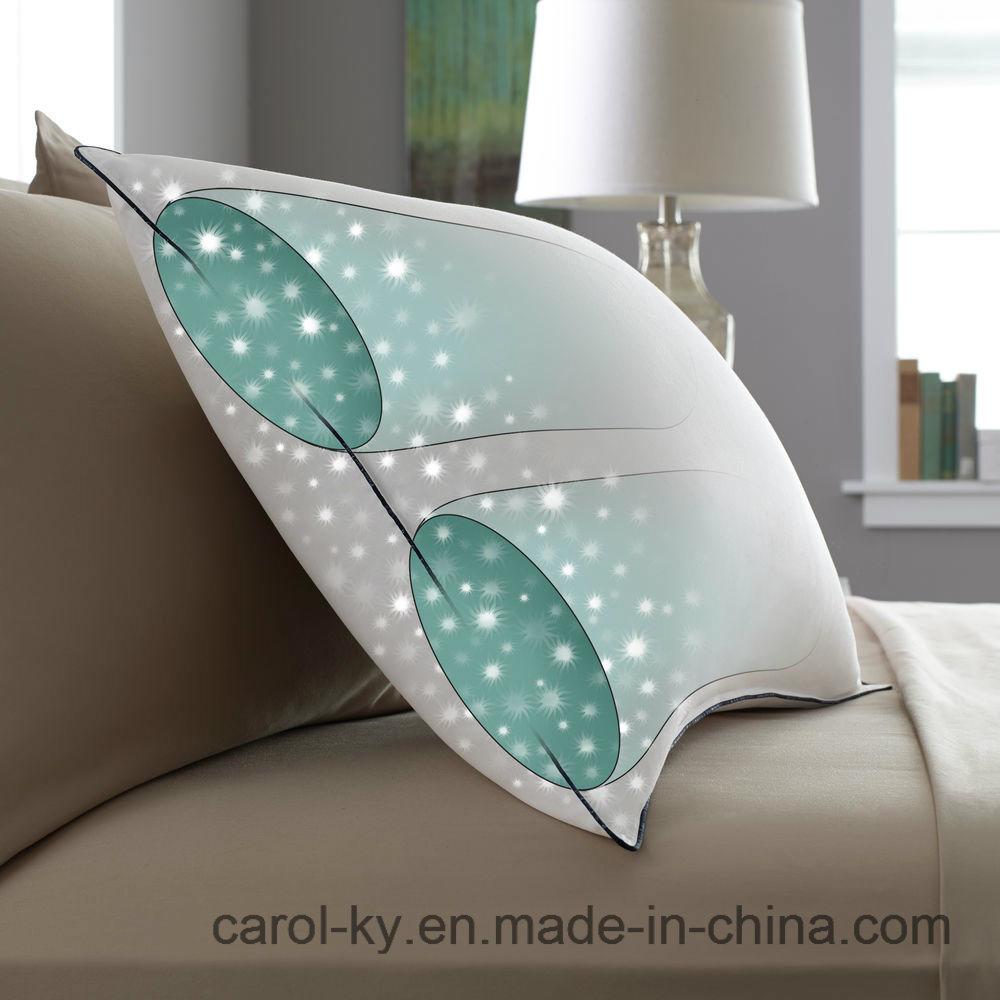 Dual Inner Chamber Design Down Pillow