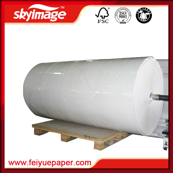 Jumbo Reel Format Sublimation Paper for Digital Printing
