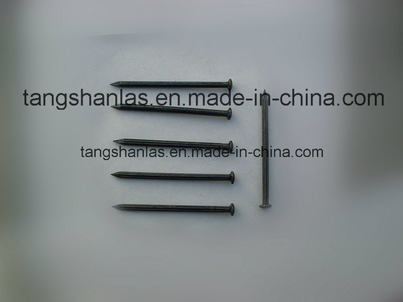 Black Concrete Nails with Half-Round Head