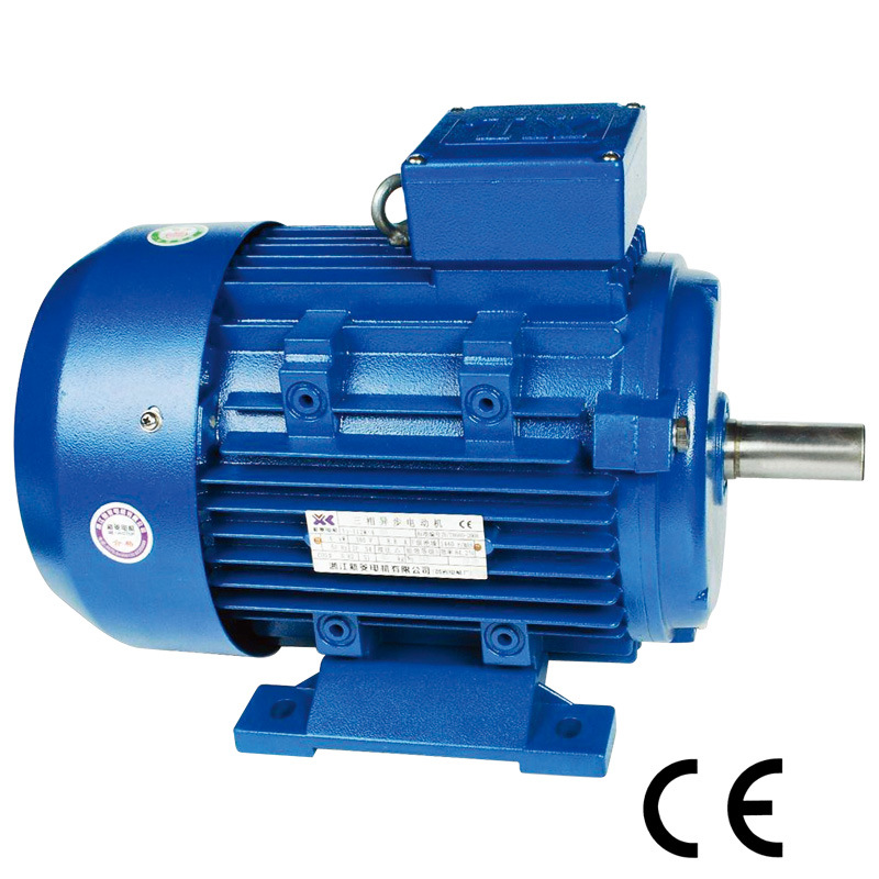 China Three Phase Asynchronous Electric Motor 4kw For Gear