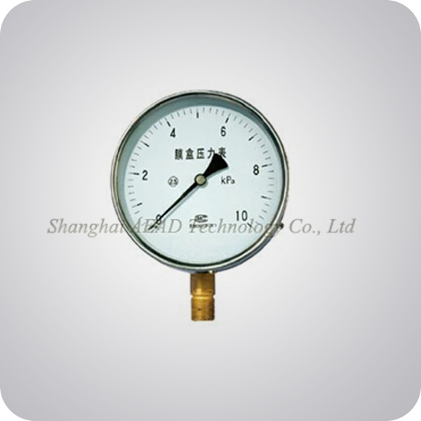 Liquid Filled Capsule Pressure Gauge (A+E-810YE)