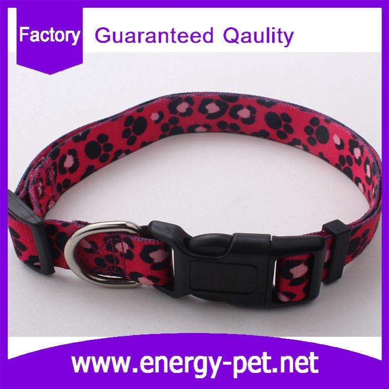 Cute Paws Pet Products of Pattern Dog Collar