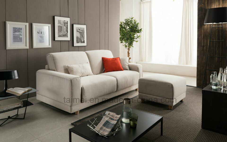 Best Selling Modern Function Fabric Sofa (1+2+3)