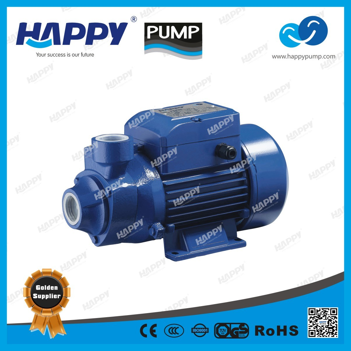 Electric Vortex Water Pump PKM