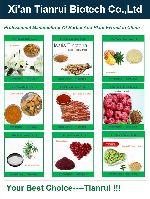 Manufactory Supply White Kidney Bean Extract