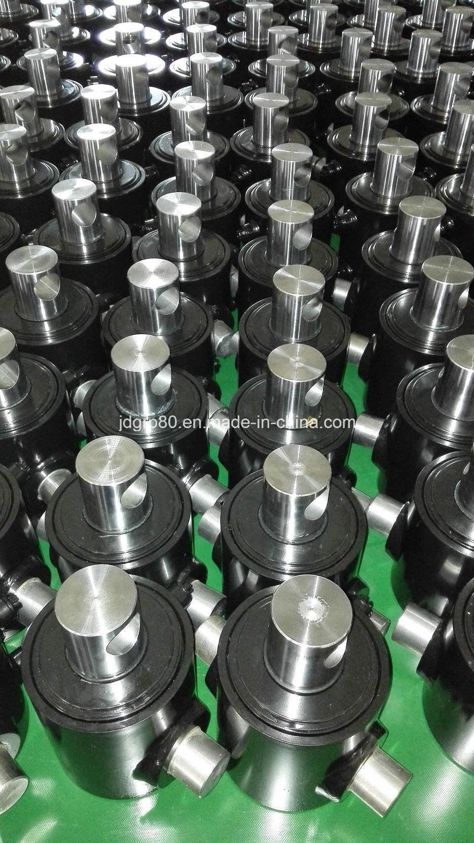 Hydraulic Cylinder for USA Market Custom-Made