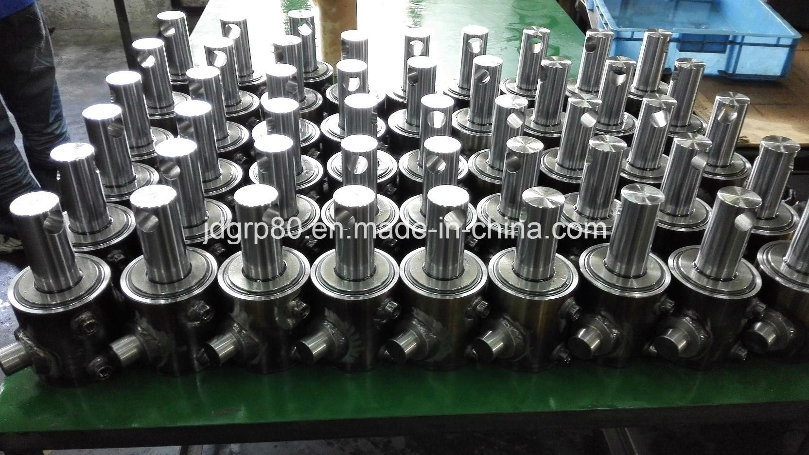 Hydraulic Cylinder for USA Market Custom-Made