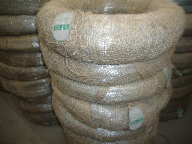 Hot Sale! ! ! Factory Supply Hot DIP Galvanized Wire