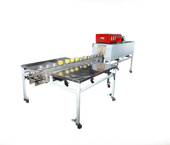 Chain Plate, Single Shrink Film Machine