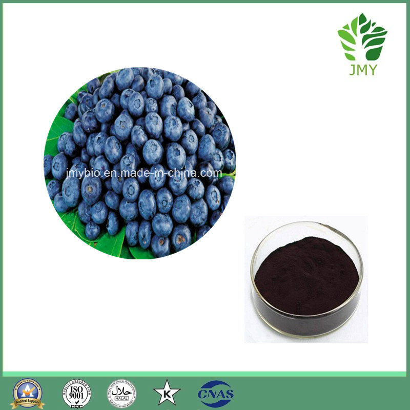 100% Natural Bilberry Extract Anthocyanidins15%-35%