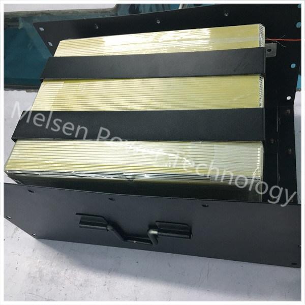 Lithium Polymer Battery Storage Battery Pack 12V24V 48V 200ah with Case