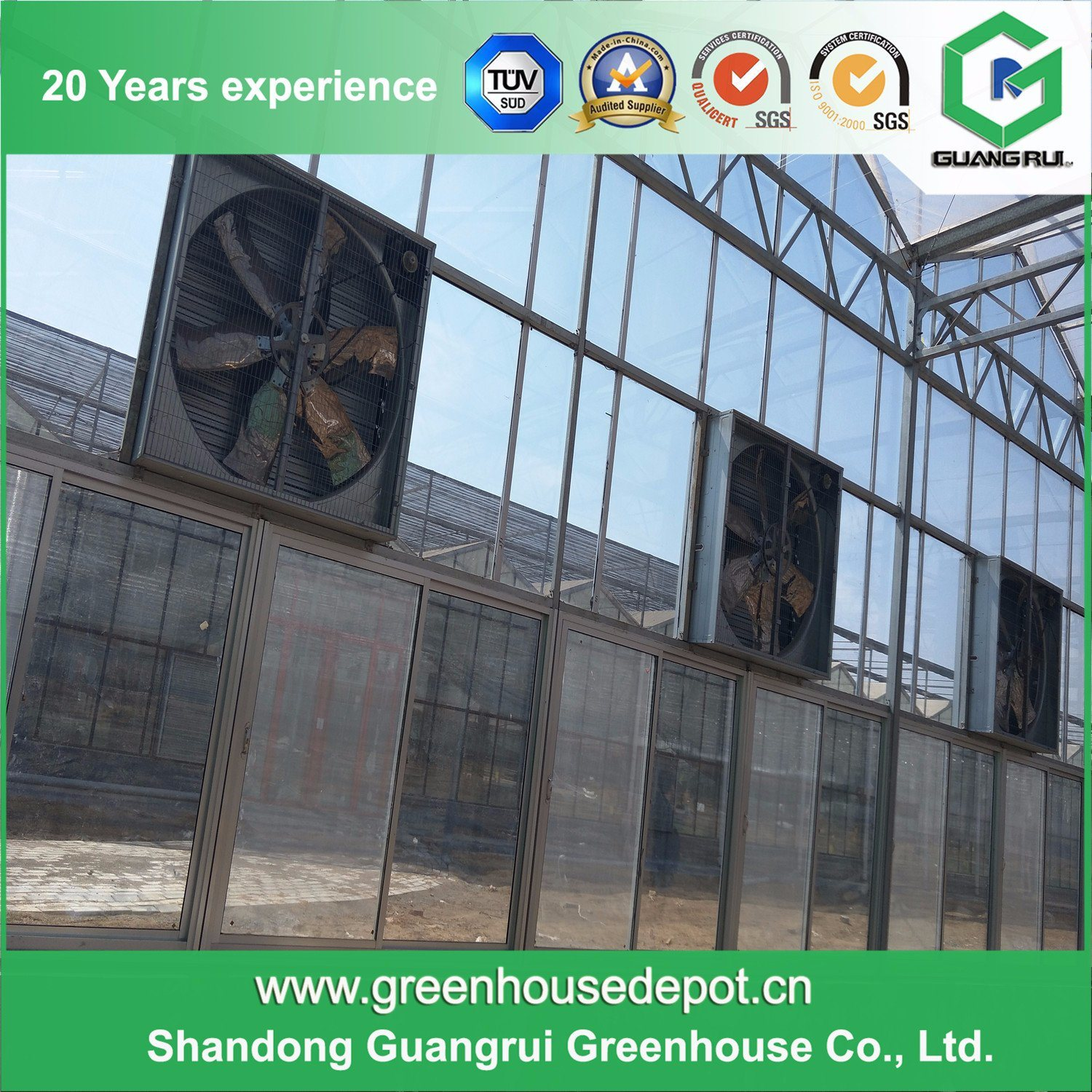 Hot Sale Automatic Control System Glass Greenhouse for Planting