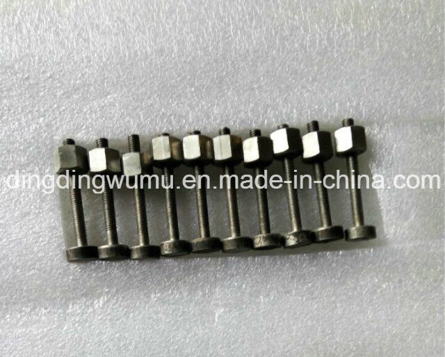Pure Molybdenum Screw for Vacuum Furnace