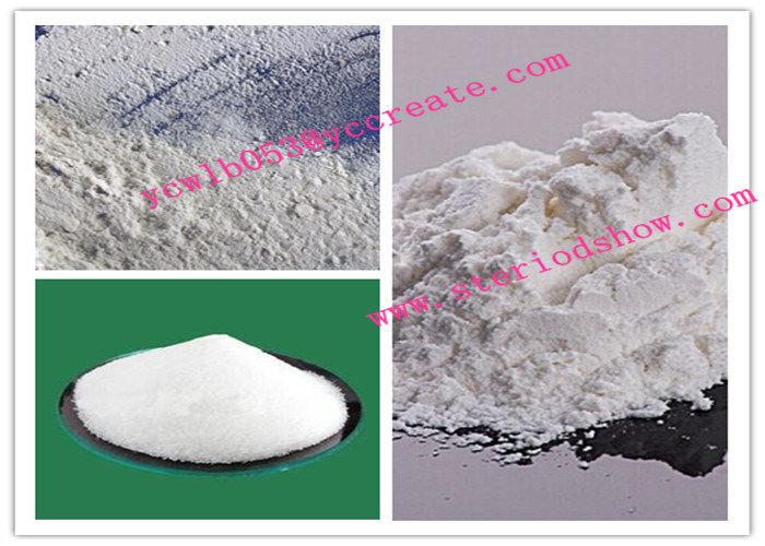 Nature Test Enanthate CAS No.: 315-37-7 Raw Steroids Powder Testosterone Enanthate for Fat Burning