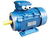 Ie2 Ms Series Three Phase Motor