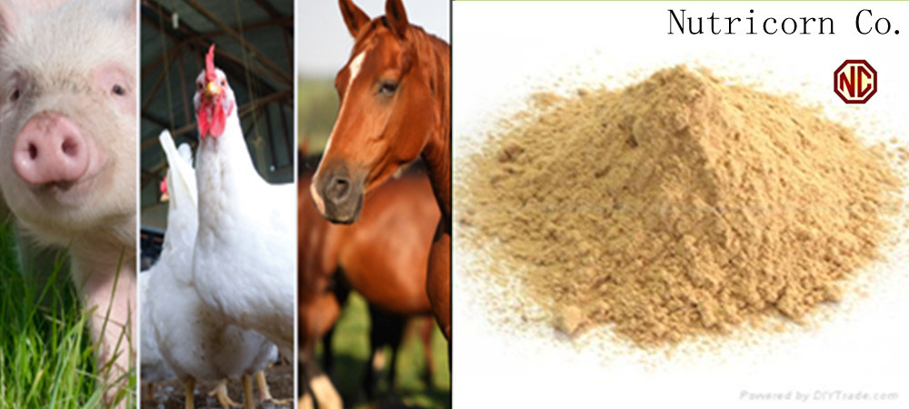 L-Lysine HCl 98.5% Feed Grade Cattle Feed Feed Concentrate