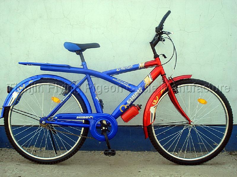 Special Frame MTB Mountian Bike (MTB-004)