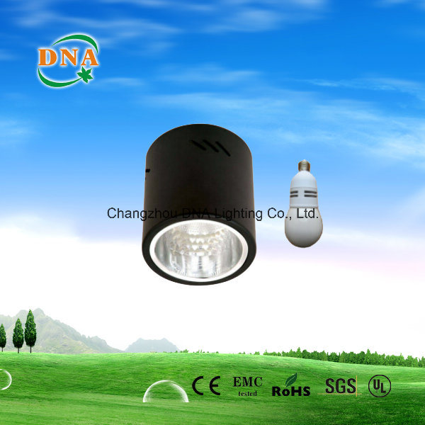 Induction Down Light