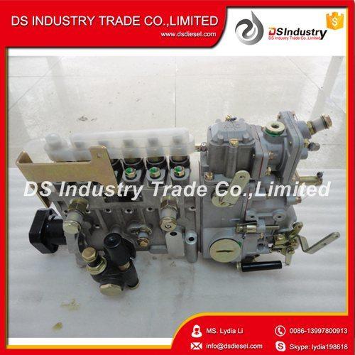 Car Accessories Yuchai A87g0-1111100-493 Fuel Pump
