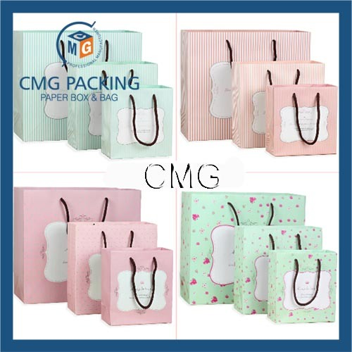 Customized Paper Gift Bag Garments Shopping Bag