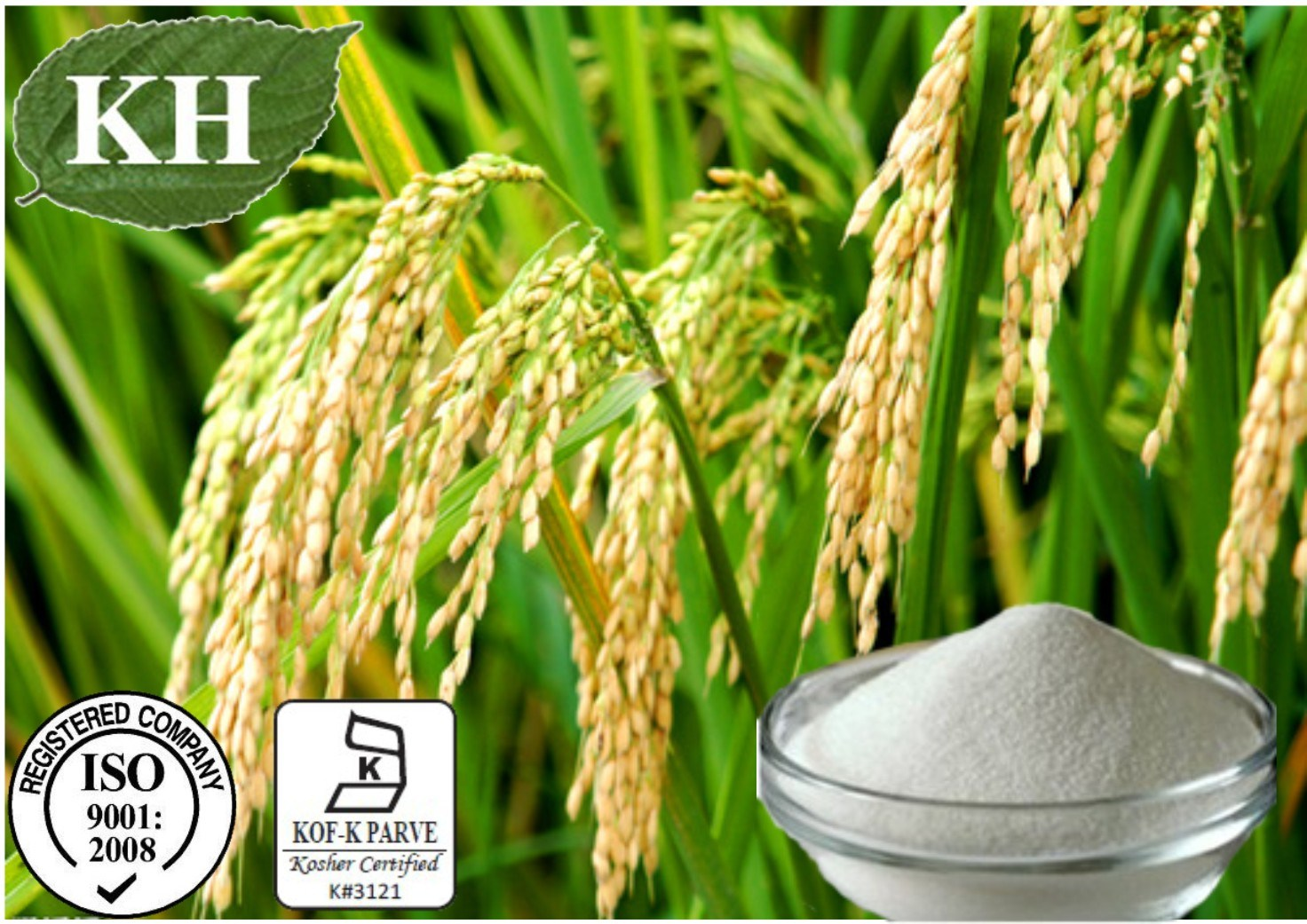 Pure Natural Cosmetic Ingredients Ferulic Acid 10% by HPLC