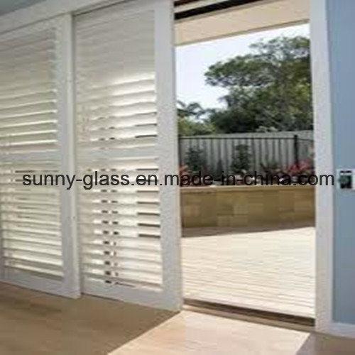 Louver Glass / Window Glass / Building Glass