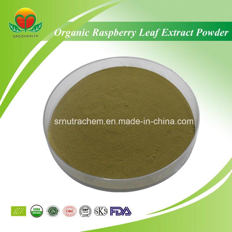 High Quality Organic Raspberry Leaf Extract Powder