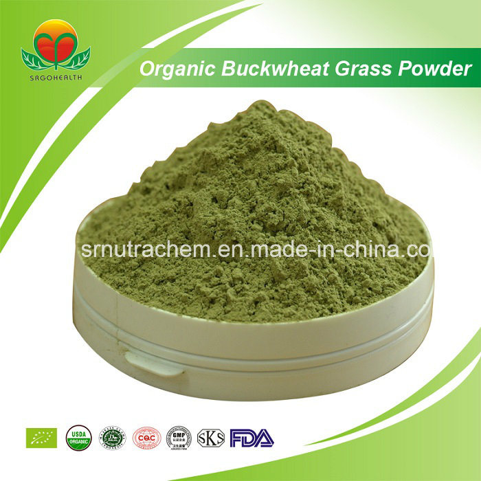 Manufacturer Supply Organic Buckwheat Grass Powder