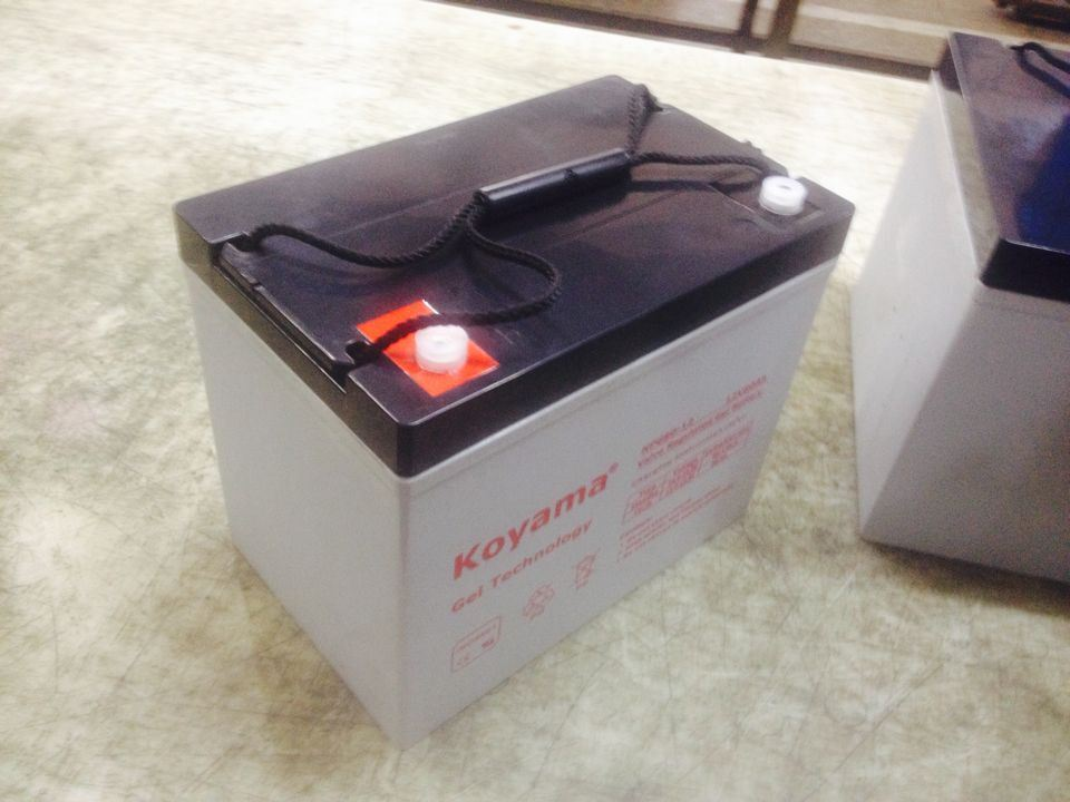 High Quality European Electric Boat Battery 80ah 12V Npg80-12