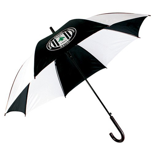 Promotional Umbrella, Gift Umbrella, Advertising Umbrella (BR-ST-112)