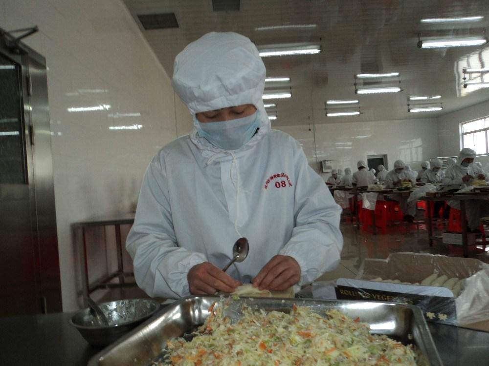 HACCP Brc Certifacte Tsingtao Vegetable 40g/piece Spring Rolls in Frozen Cookin