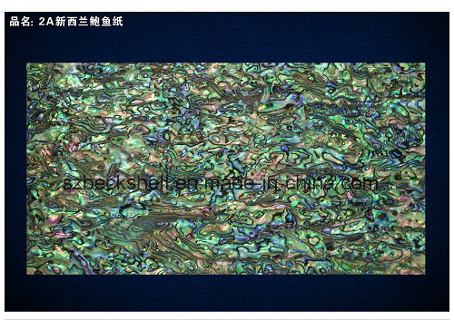AA Grade New Zealand Abalone Shell Sheet/Shell Paper