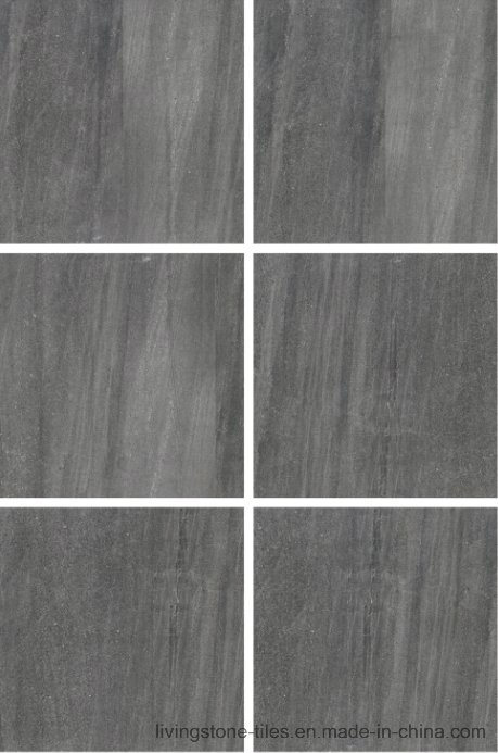 Foshan Factory New Inkjet Six Face Grey Porcelain Tile Lx6617W
