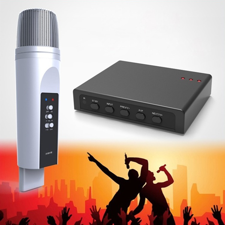 Gymsong Wireless Bluetooth Wireless Microphone Home Karaoke Microphone Box