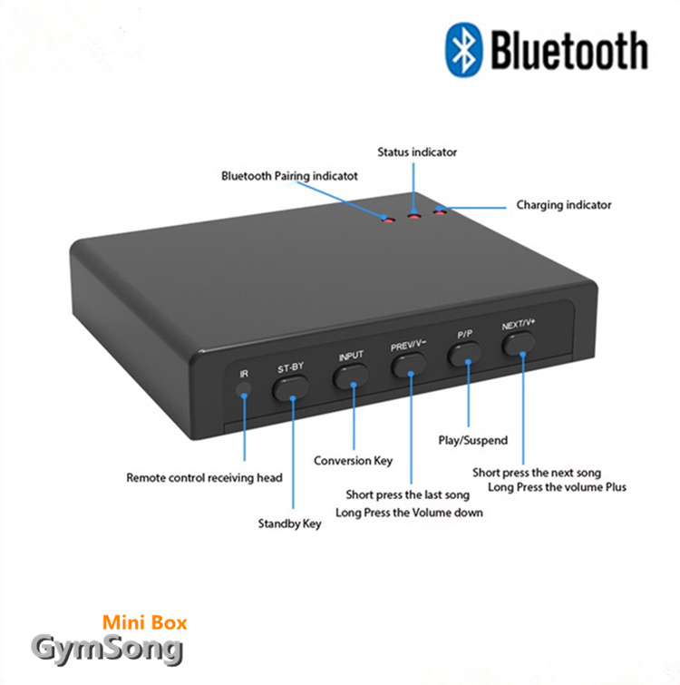 Gymsong Wireless Bluetooth Wireless Microphone Home Karaoke Microphone Box