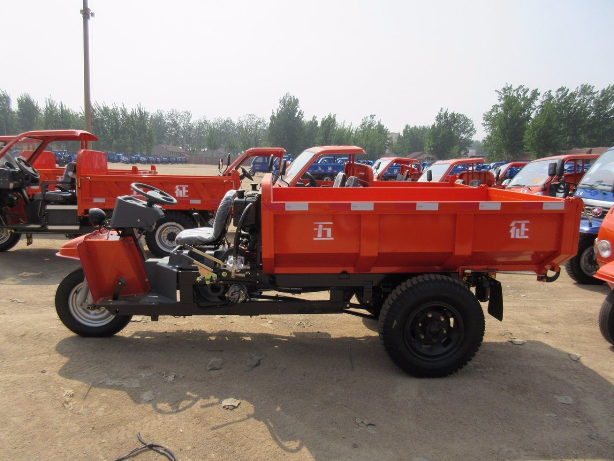 China Famous Brand Three-Wheel Vehicle with Diesel Engine