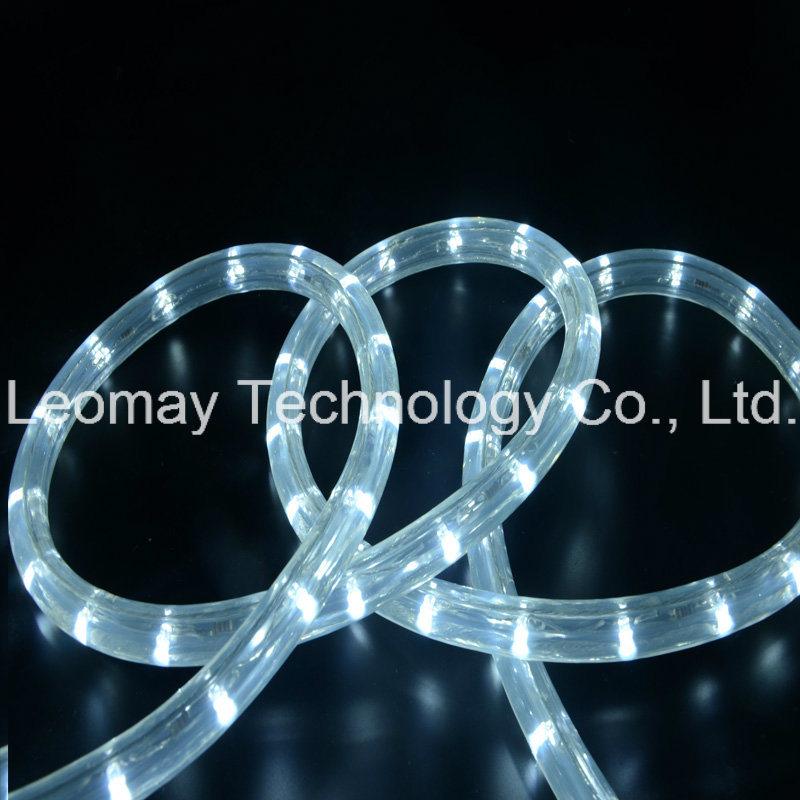 LED Bulb D2 AC220V Waterproof IP65 Flexible LED Rope Light